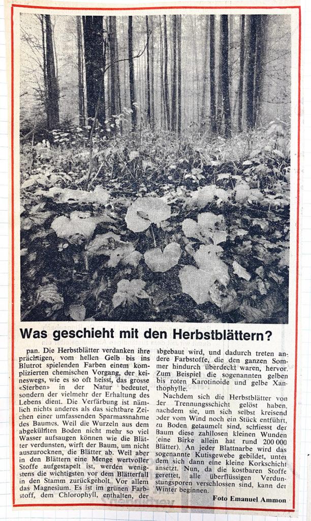 Feature im Luzerner Tagblatt, Niv. 1980. Text Peter A. Meyer.